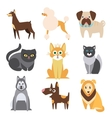 Collection of Cats and Dogs Different Breeds Flat vector image