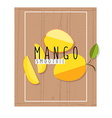 colorful of mango slices in flat design styl vector image