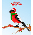 Christmas bullfinch bird in santa hat vector image