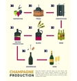 wine making How is made vector image