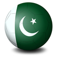A soccer ball with the flag of Pakistan vector image