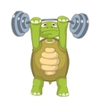 Funny Turtle Gym vector image vector image