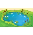 Game Background Of Pond vector image