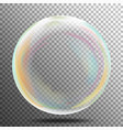 multicolored transparent soap bubble on a plaid vector image
