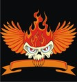 fire skull and wing vector image