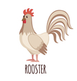White Rooster in flat style vector image