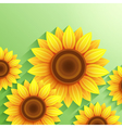 Nature modern background with 3d sunflower vector image