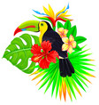 bright tropical composition with toucan palm and vector image