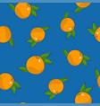 seamless pattern grapefruit on blue background vector image