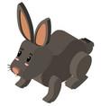 3d design for black rabbit vector image