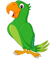 Cartoon cute parrot vector image vector image
