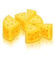 sliced cheese circle vector image vector image