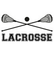 Lacrosse sticks and ball Flat style vector image