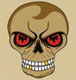 isolate skull vector image