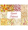 Autumn fallen leaves seamless patterns set vector image