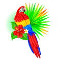parrot with palm leaf and hibiscus vector image