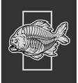 Skeleton piranha and a geometric element vector image