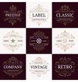 Set of retro vintage luxury logotypes vector image