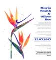 background with Strelitzia flower vector image