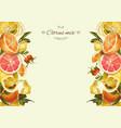 Vintage citrus banner vector image