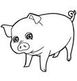 cartoon cute pig coloring page vector image