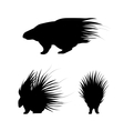 Porcupine silhouettes vector image