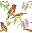 Watercolor Wild exotic birds on flowers seamless vector image