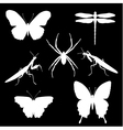 insect set2 vector image