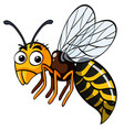 bee flying on white background vector image