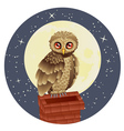 Owl and Moon2 vector image