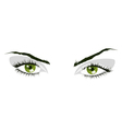 Green eyes vector image