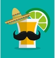 Mexico landmarks design vector image