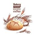 Bakery Sketch Concept vector image