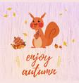 cute cartoon squirrel card vector image