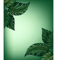 Greenery leaves vector image