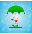 ornamental umbrella on blue background vector image vector image