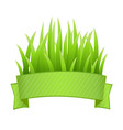 Grass Banner vector image vector image