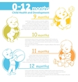 Baby growing up infographic vector image