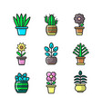 plants in flower pots decoration icons set vector image