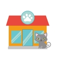 gray small cat green eyes pet shop facade paw vector image