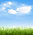 Grass lawn with clouds on blue sky vector image