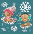two teddy bears vector image