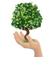 hand holding a growing tree vector image