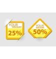 Orange discount vector image