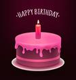 Happy Birthday Cake vector image