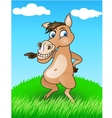 horse in the wild vector image vector image