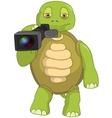 Funny Turtle Cameraman vector image