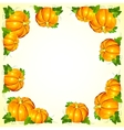 Bright orange pumpkins frame vector image