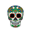mexican sugar skull with colorful floral pattern vector image