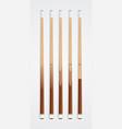 Billiard cue sticks on white background vector image